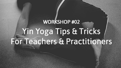 Yin Yoga Workshop #02 • Tips & Tricks for Teachers & Practitioners